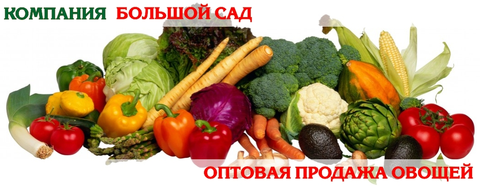 Оптовая продажа овощей в Екатеринбурге